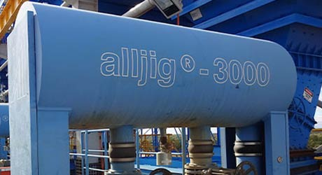 Detailed view of an alljig plant