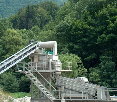 allmineral plant in green forest surroundings